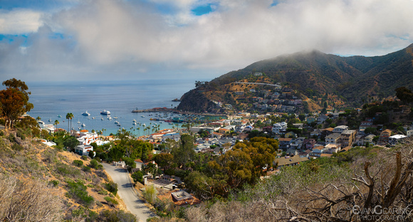 Catalina Panorama